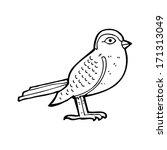 cartoon garden bird | Shutterstock .eps vector #171313049