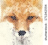 Fox Portrait Made Of...