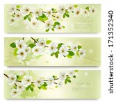 three spring banners with... | Shutterstock .eps vector #171352340