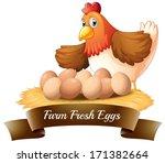 illustration of the fresh eggs...
