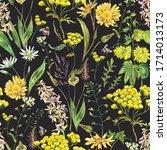 vintage watercolor summer... | Shutterstock . vector #1714013173