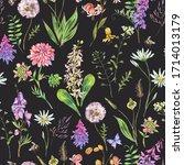 vintage watercolor summer... | Shutterstock . vector #1714013179