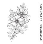 Hand Drawn Small Bouquet With...
