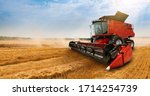 Combine Harvester On The Wheat...
