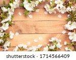 Spring Cherry Blossom    Spring ...