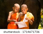 Monks Or Novices Read Books On...