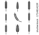 Wheat Ears Icon  Logo Isolated...