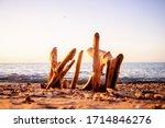 Driftwood On The Sand Sea Shor...
