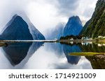 Land Of Hobbits   New Zealand....