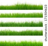 green grass on white   Shutterstock . vector #171504623