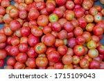 Fresh Ripe Red Tomatoes  ...