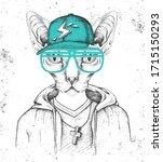 Hipster Animal Sphynx Cat...