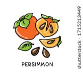 Persimmon Fruit Collection...