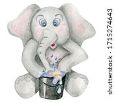 Cute Little Elephant With...