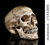 Small photo of Human skull on isolate black background with reflection