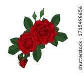 beautiful bouquet with red... | Shutterstock . vector #1715498656