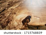 Wood Surface Cross Section Of...
