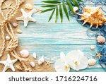 Seashells On Sand. Sea Summer...