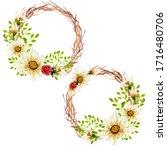 set of 2 white wild flowers... | Shutterstock . vector #1716480706