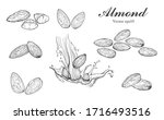 illustration hand drawn sketch  ... | Shutterstock .eps vector #1716493516