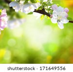 spring background  | Shutterstock . vector #171649556