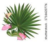 tropical flowers. anthurium....   Shutterstock .eps vector #1716620776