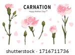 illustration with beautiful... | Shutterstock .eps vector #1716711736