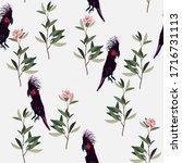 black cockatoo parrot and green ... | Shutterstock .eps vector #1716731113