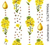 rape seeds and flowers  canola... | Shutterstock .eps vector #1716799906