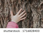 Closeup Of Child Hand Touching...