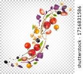 beautiful appetizing... | Shutterstock .eps vector #1716831586