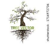 tree  logo tree isolated on... | Shutterstock .eps vector #1716972736