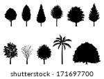 Roadside Tree   Silhouette