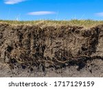 Root and soil layers on edge of pasture drop off