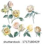 Set Of Beautiful Watercolor...