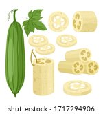 cartoon flat loofa collection | Shutterstock .eps vector #1717294906