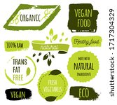 healthy food icons  labels.... | Shutterstock .eps vector #1717304329