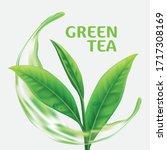 realistic green tea leaves... | Shutterstock .eps vector #1717308169