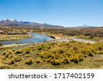 High Andean Tundra Landscape In ...