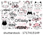 Doodle Cats Illustration And...
