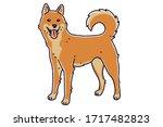jindo dog. vector illustration. ... | Shutterstock .eps vector #1717482823