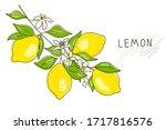 lemon tree branch with yellow...   Shutterstock .eps vector #1717816576