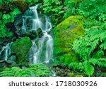 Little Redwood Creek Falls Is...