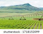Centre Pivot Irrigation...