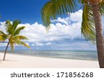 miami florida  beautiful summer ... | Shutterstock . vector #171856268