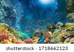 Group Of Scuba Divers Exploring ...