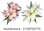 Flowers Bouquets. Watercolor...