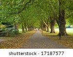 a beatiful pathway under the... | Shutterstock . vector #17187577