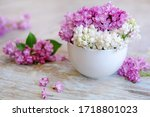 Cup Of Tea With Lilac Flowers...