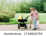 Family With A Stroller Walking...